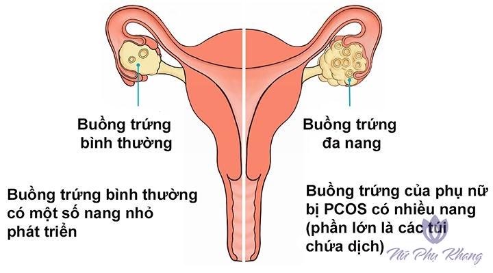 chung-buong-trung-da-nang