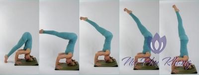 Những bài tập Yoga hỗ trợ điều trị viêm âm đạo tại nhà đơn giản dễ tập